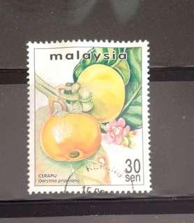 Malaysia 1999 Rare Fruits of Malaysia Cerapu 30c Used (0299)