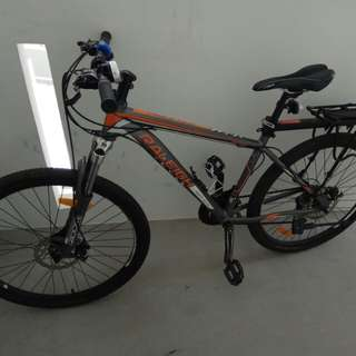 Raleigh M200 Mountain bike