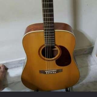 Acoustic Guitar cort guitar earth 100 QN Matt