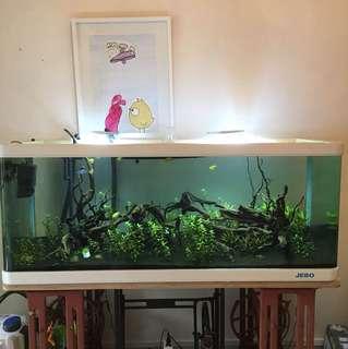 5 ft fish tank w/ accessories