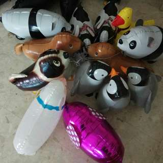 Pet Balloons with Helium Gas. ( Various Designs )