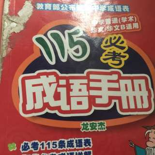 Chinese books (成语,作文, 少年文摘 etc.)