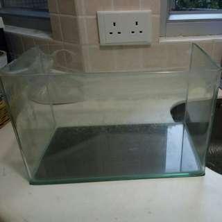 水晶魚缸 7' x 12' x 12.5' 高