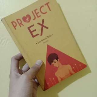 The project ex