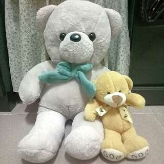 Teddy Bear 1+1 #15Off