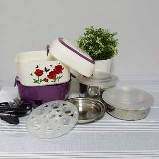 Electonic lunch box