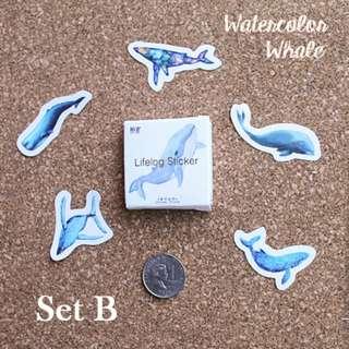 5pcs Watercolor Whale Sticker Sample Set B