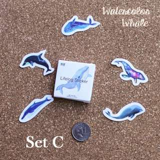 5pcs Watercolor Whale Sticker Sample Set C