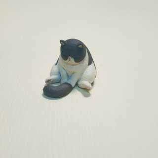 💡扭蛋 睡覺動物 貓咪