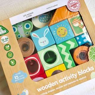 Wooden Activity Toy Blocks for Toddlers