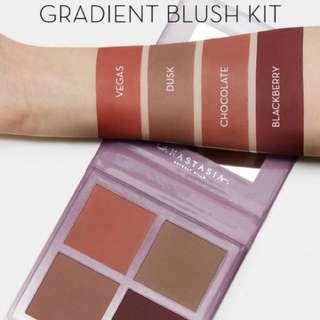 Anastasia radiant brush kit