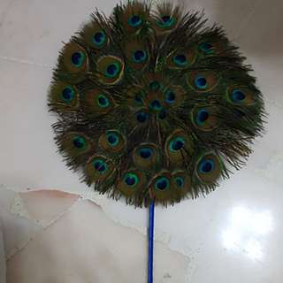 Natural Peacock feather hand fan