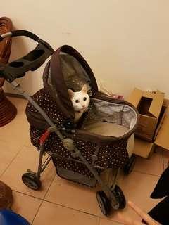 Petstro寵物推車九成新買來用一次