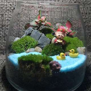 Fortune God Moss Terrarium