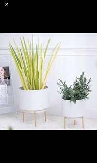 Flower pot / plant pot / planter