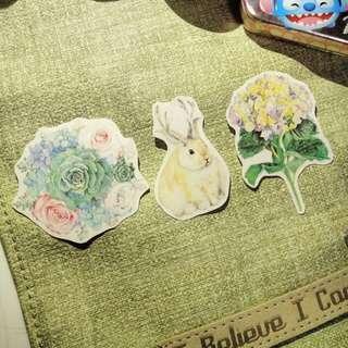 Transparent beautiful stickers