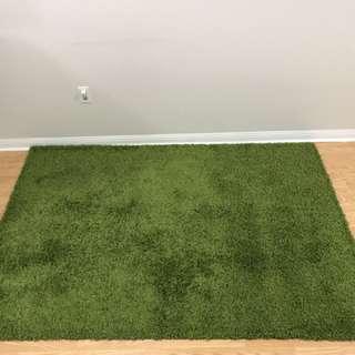 Green Area Rug - URGENT!!!!