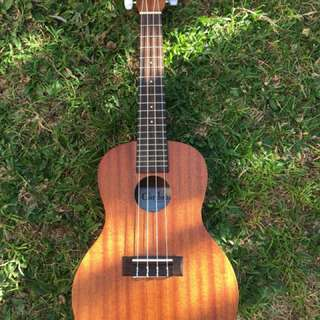 Cordoba up100 concert ukulele with accessories brandnew