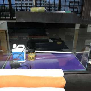 Selling fishtank with free accessories :)