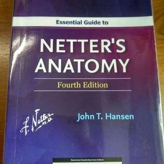 Netter's Anatomy Flashcard