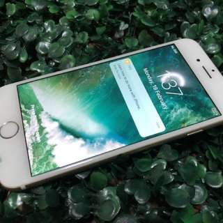 Iphone 6 64gb complete gold
