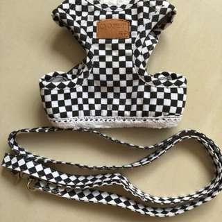 Pet harness & leash