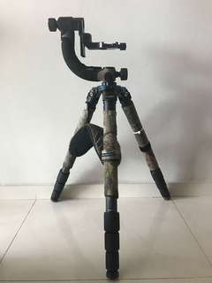 Benro Carbon Tripod and Jobu Gimbal head