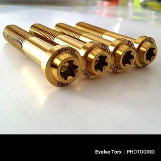 🔩M10 Titanium Torx Caliper Bolt