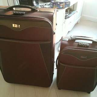 Echolac luggage  (Small one only)
