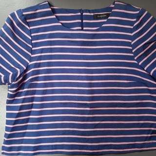 Glassons Pink & Blue top