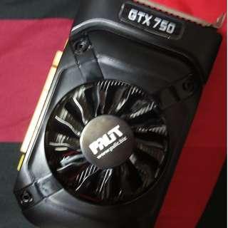 GTX 750 2GB
