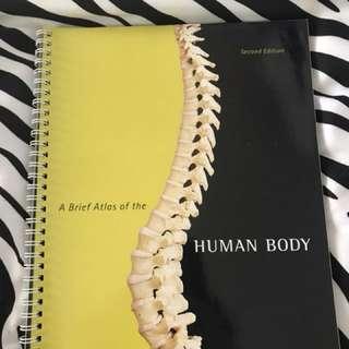 Anatomy atlas book