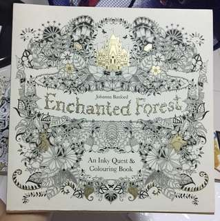 Enchanted Forest & Lost Ocean Colouring Book