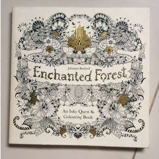 Enchanted Forest (Adult coloring book)