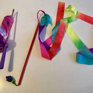 Gymnastic ribbon and trophy