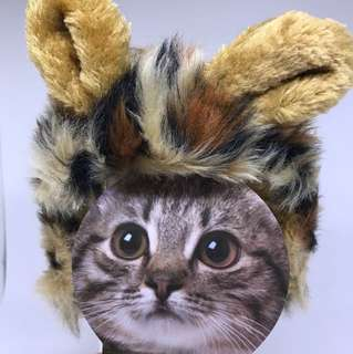 NEW Cat Costume for Small Cat JAPAN imported