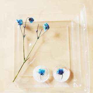 Real Flower Earrings in Pearl & Blue