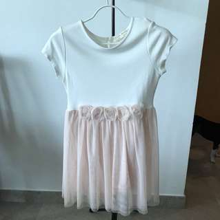 Zara Rose Dress