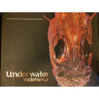 'Our Underwater Indonesia' Book of amazing underwater scenes from around Indonesia