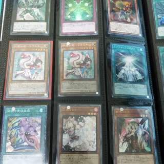 Yugioh Collector and Ultimate Rares