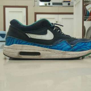 Nike Air Max Zebra Blue