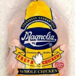 Magnolia fresh whole chicken