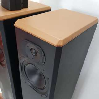 Hi end Paradigm bipolar home theatre speaker
