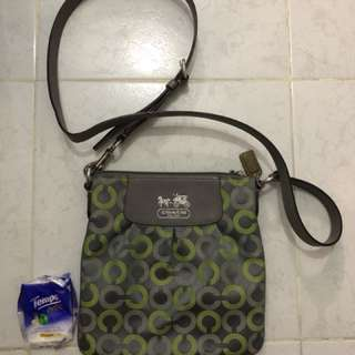 Coach grey green hangbag