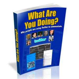 What Are You Doing? Why People Are Using Twitter To Communicate eBook