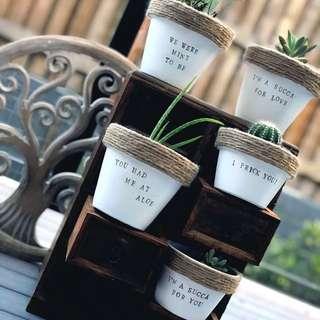 Home made pots/ cheeky puns