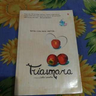 Novel Triasmara
