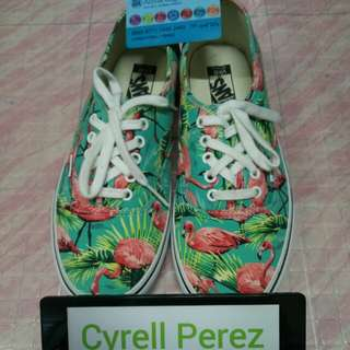 Vans Authentic VanDoren Turquoise