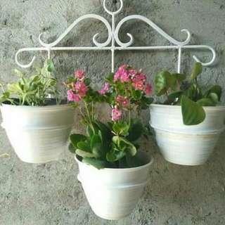 Rak pot bunga