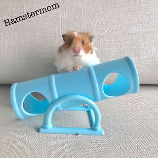 Hamster Tunnel See-Saw Hideout Toy
